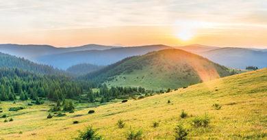 © Pavlo_Vakhrushev/AdobeStock